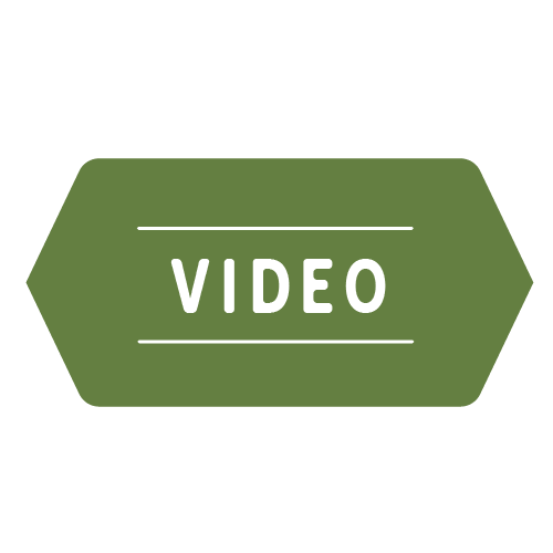 category-badges-green-video500_1178160828